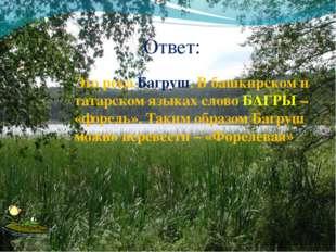 Ответ: Это река Багруш. В башкирском и татарском языках слово БАГРЫ – «форель