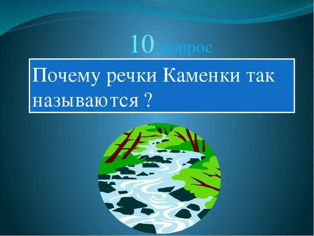 10 вопрос Почему речки Каменки так называются ?