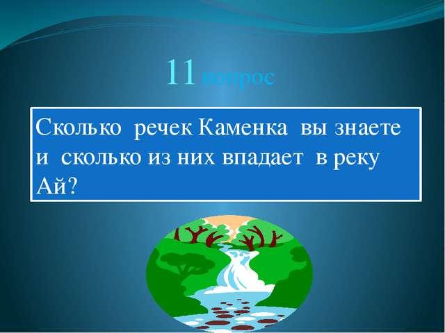 11 вопрос Сколько речек Каменка вы знаете и сколько из них впадает в реку Ай?
