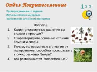Проверка домашнего задания Вопросы Какие голосеменные растения вы видели в пр