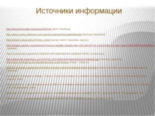 Источники информации http://www.photosight.ru/photos/3596700/ (фото бербера)