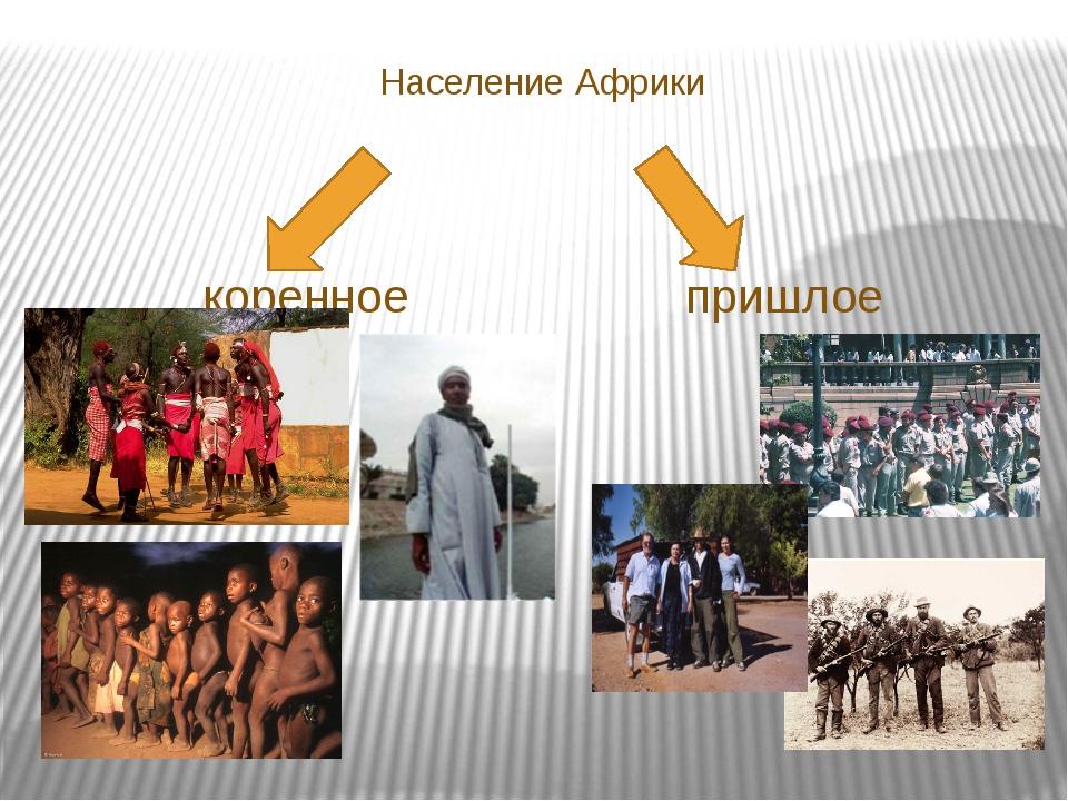Население Африки коренное пришлое