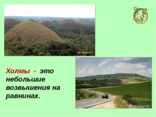 Холмы - это небольшие возвышения на равнинах. Окружающий мир