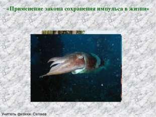 «Применение закона сохранения импульса в жизни» Учитель физики: Силаев Алекса