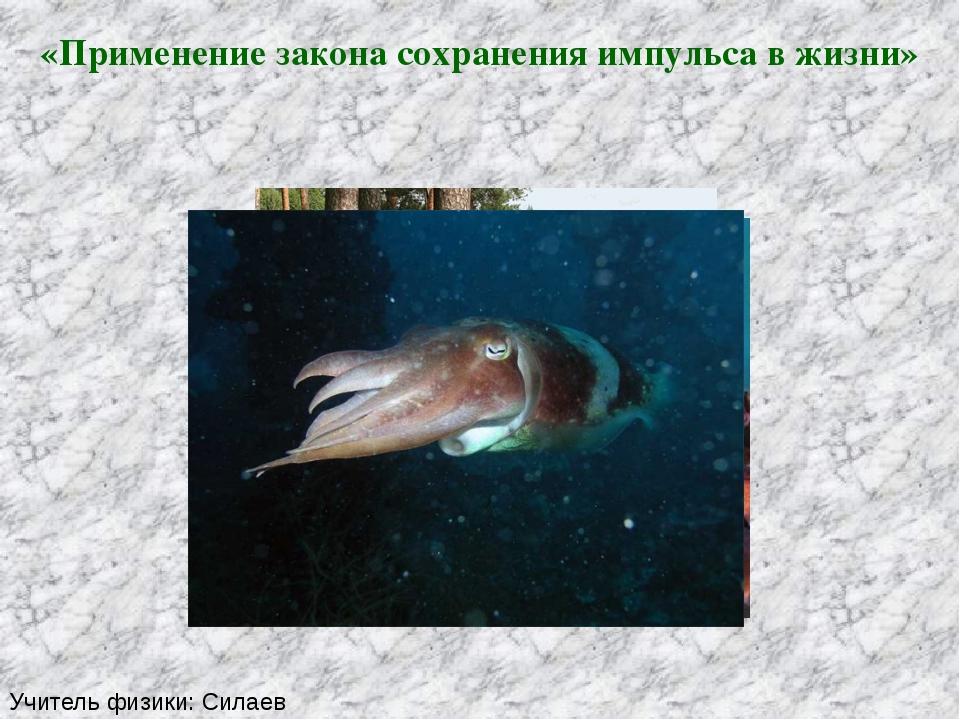 «Применение закона сохранения импульса в жизни» Учитель физики: Силаев Алекса...