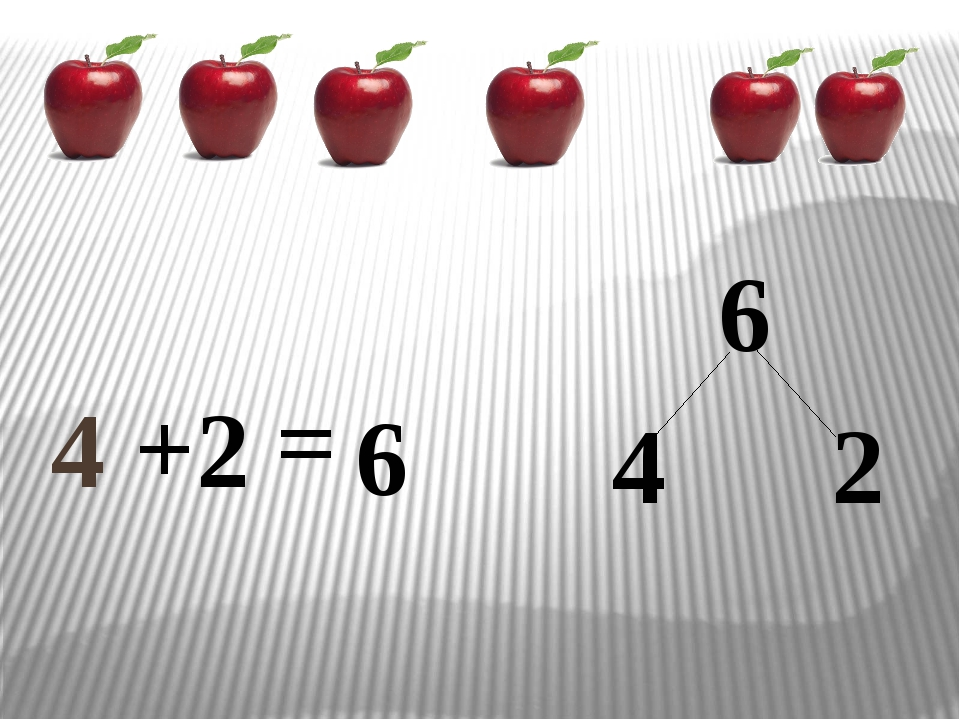 4 + 6 6 = 2 4 2