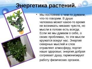 Энергетика растений. Мы постоянно о чем-то думаем, что-то говорим. В душе чел