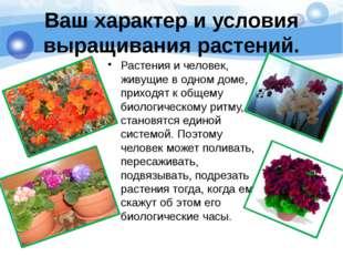Ваш характер и условия выращивания растений. Растения и человек, живущие в о