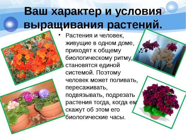 Ваш характер и условия выращивания растений. Растения и человек, живущие в о...