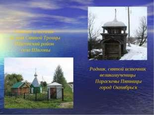 Святой источник во имя Святой Троицы Шигонский район село Шигоны Родник, свят