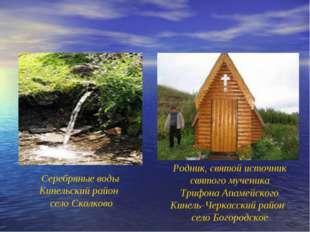 Серебряные воды Кинельский район село Сколково Родник, святой источник святог