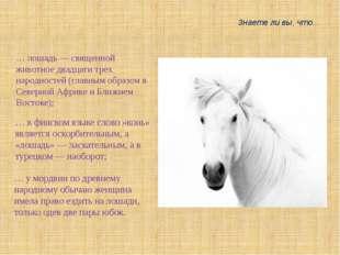 … лошадь — священной животное двадцати трех народностей (главным образом в Се