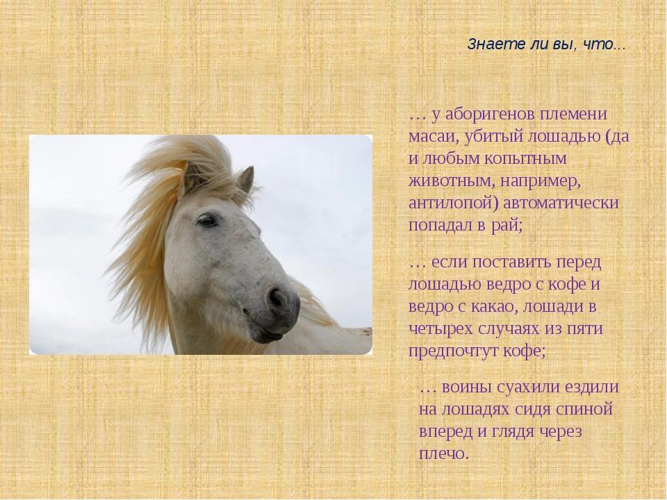 … у аборигенов племени масаи, убитый лошадью (да и любым копытным животным, н...