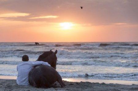Парень и лошадь на берегу на закате