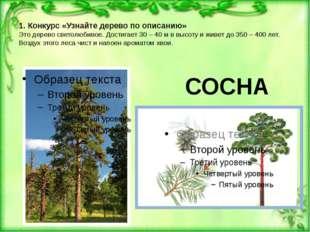 1. Конкурс «Узнайте дерево по описанию» Это дерево светолюбивое. Достигает 3