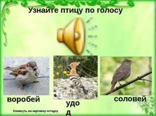 Узнайте птицу по голосу Кликнуть на картинку-отгадку Неверно! Верно! соловей