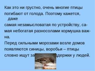 Как это ни грустно, очень многие птицы погибают от голода. Поэтому кажется, д