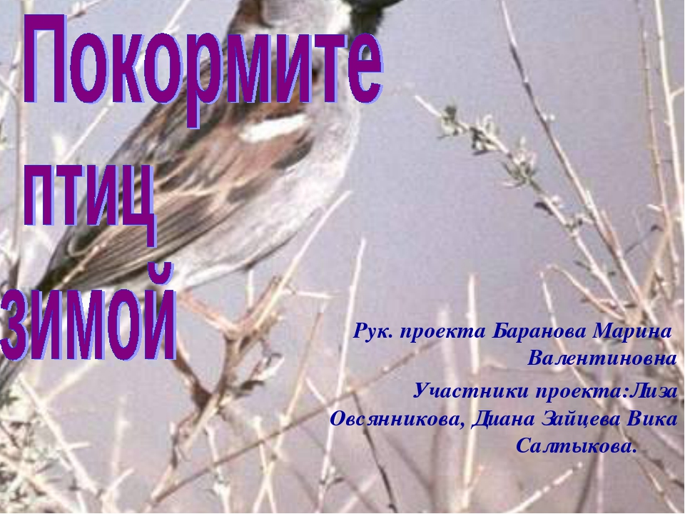 Рук. проекта Баранова Марина Валентиновна Участники проекта:Лиза Овсянникова,...