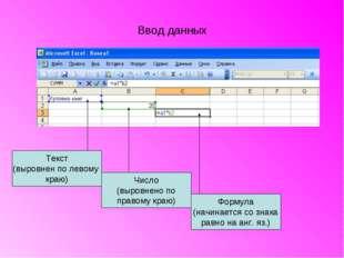 Ввод данных Текст (выровнен по левому краю) Формула (начинается со знака равн