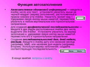 Автозаполнение одинаковой информацией — введите в ячейку число или текст, уст