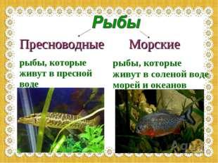 Пресноводные рыбы, которые живут в пресной воде Морские рыбы, которые живут в