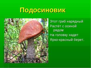 Подосиновик Этот гриб нарядный Растёт с осиной рядом На головку надет Ярко-к