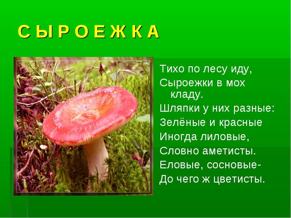 С Ы Р О Е Ж К А Тихо по лесу иду, Сыроежки в мох кладу. Шляпки у них разные:...