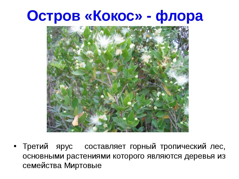 Остров «Кокос» - флора Третий ярус составляет горный тропический лес, основны...