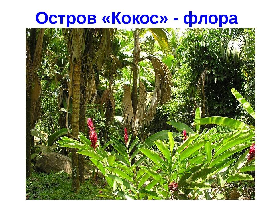 Остров «Кокос» - флора Завьялова Екатерина, МБОУ СОШ № 24