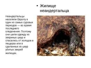 Жилище неандертальца Неандертальцы населяли Европу в один из самых суровых пе