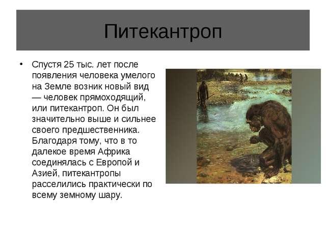 Питекантроп Спустя 25 тыс. лет после появления человека умелого на Земле возн...