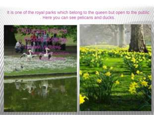 It is one of the royal parks which belong to the queen but open to the public
