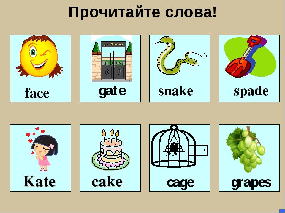Прочитайте слова! face gate snake cake spade cage Kate grapes