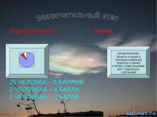 Оценка проекта Вывод: 25 ЧЕЛОВЕК – 5 БАЛЛОВ 2 ЧЕЛОВЕКА – 4 БАЛЛА 2 ЧЕЛОВЕКА –