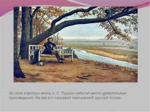 За свою короткую жизнь А. С. Пушкин написал много удивительных произведений.