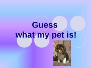 Guess what my pet is!