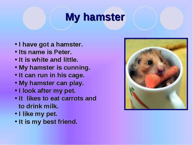 My hamster I have got a hamster. Its name is Peter. It is white and little. M...