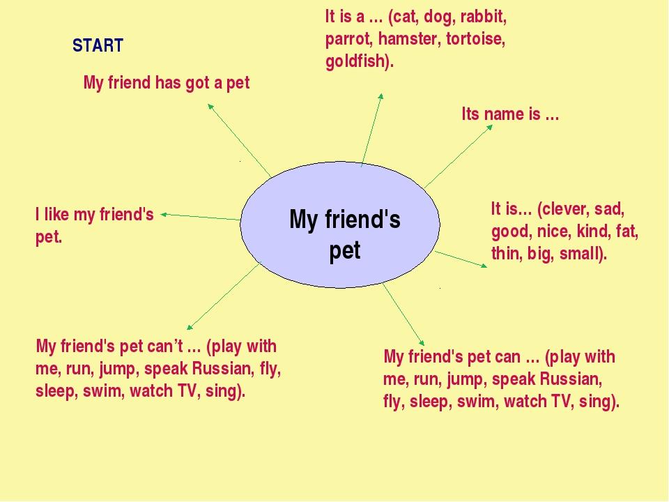 My friend's pet My friend has got a pet It is a … (cat, dog, rabbit, parrot,...