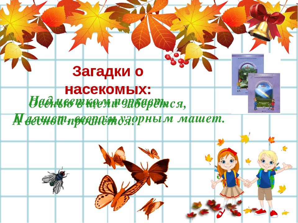 Осенью в щели заберётся, А весной проснётся. Загадки о насекомых: Над цвет...
