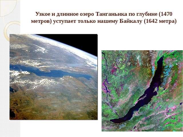 Узкое и длинное озеро Танганьика по глубине (1470 метров) уступает только наш...