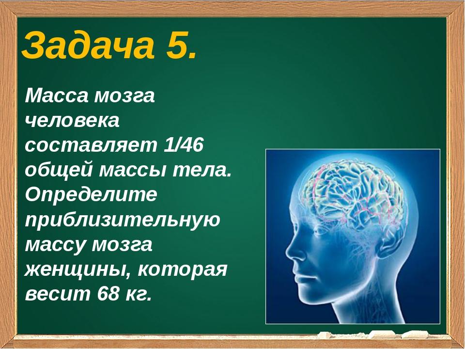 Задача 5. Масса мозга человека составляет 1/46 общей массы тела. Определите...