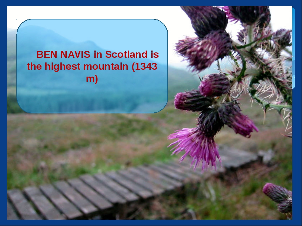 BEN NAVIS in Scotland is the highest mountain (1343 m)‏