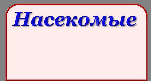 Эталон_насекомые_заготовка