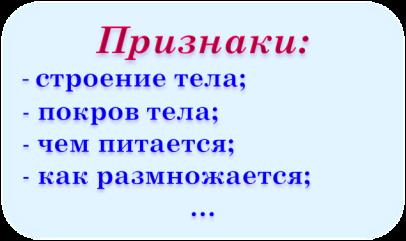 Эталон_животные_часть 2
