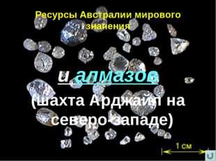 Ресурсы Австралии мирового значения и алмазов (шахта Арджайл на северо-западе)