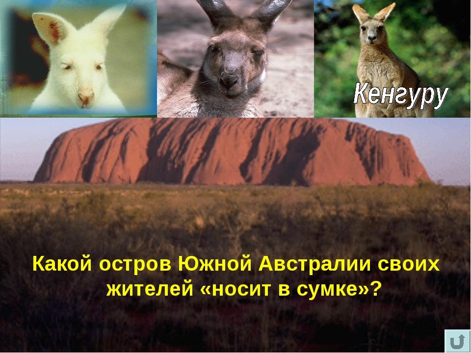 Вопрос - шутка Какой остров Южной Австралии своих жителей «носит в сумке»?