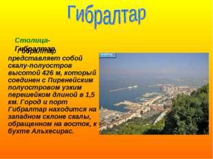 Гибралтар представляет собой скалу-полуостров высотой 426 м, который соедине