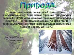 Климат умеренный, переходный от морского к континентальному. Зима мягкая (сре