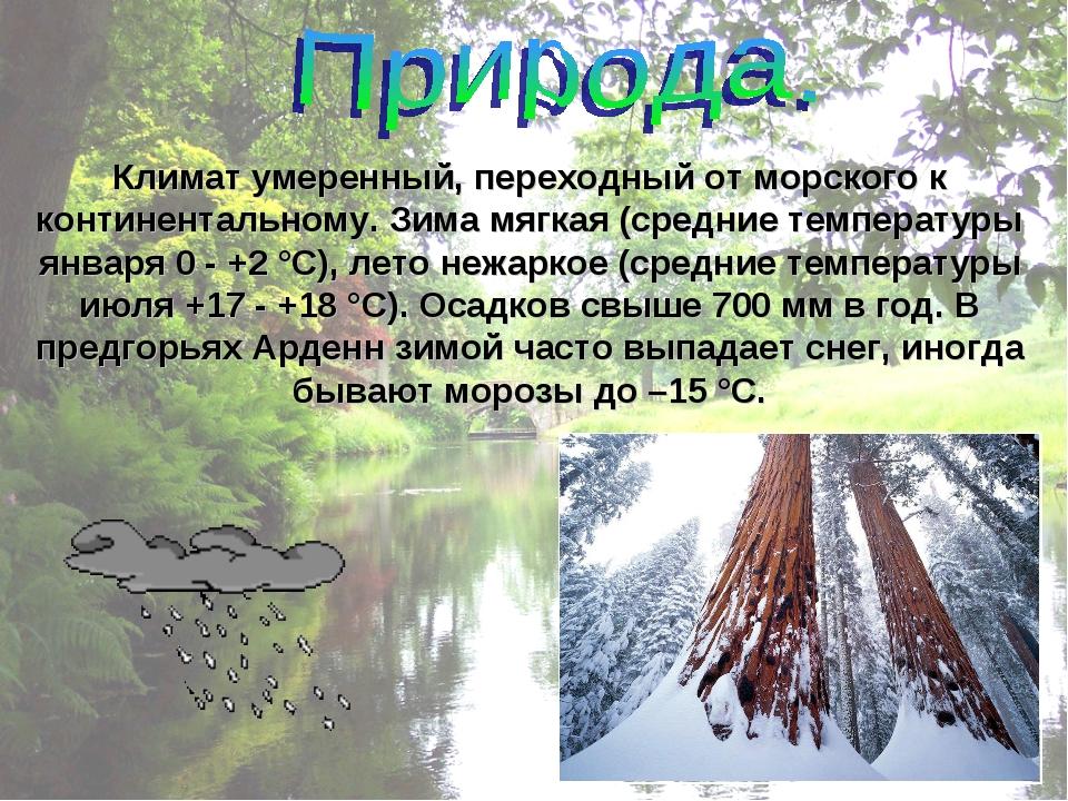 Климат умеренный, переходный от морского к континентальному. Зима мягкая (сре...
