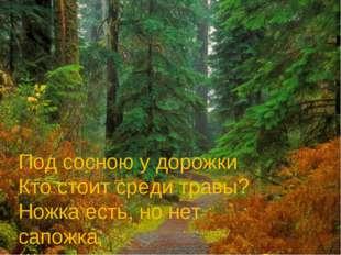 Под сосною у дорожки Кто стоит среди травы? Ножка есть, но нет сапожка, Шляпк